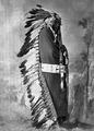 Iron Shell-Ma-Zah-Pon-Kes-Kah. Brule Sioux, 1872 - NARA - 518981.tif
