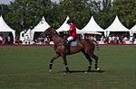 Jaeger-LeCoultre Polo Masters 2013 - 31082013 - Final match Poloyou vs Lynx Energy 61.jpg