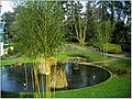 January Frost Botanic Garden Freiburg - Master Botany Photography 2014 - panoramio (15).jpg