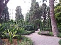 Jardín de Monforte 59.jpg