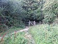 Jenny Bare Legs, Gate to Gorings Mead - geograph.org.uk - 927531.jpg