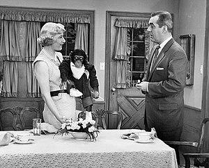 """I Married Joan - Episode """"Monkeyshines"""" (Feb. 3, 1954)"""