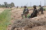 Joint air assault operation in Mushada DVIDS171634.jpg