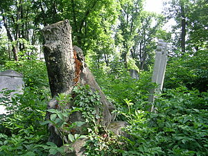 Jewish cemetery in Währing - Tombstone in the shape of a rootstock