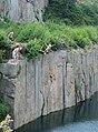 Jump - panoramio.jpg