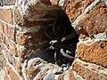 KALISZ majowe obrazki 121 - panoramio.jpg