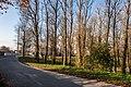 Katoŭka garden square (Minsk) 6.jpg
