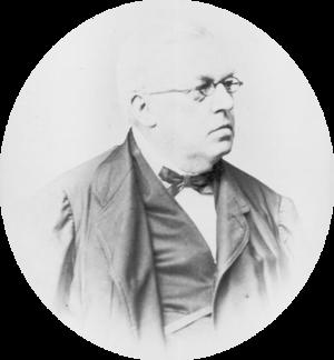 Joseph Christoph Kessler - Joseph Christoph Kessler, photograph by Josef Löwy, circa 1872