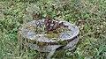 Kissakosken ruukki Säyneinen mylly 24.jpg