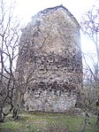 Kistauri tower.jpg
