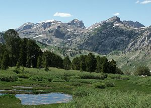 Ruby Mountains Wilderness - Ruby Mountains Wilderness