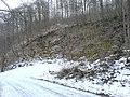 Kleiner Steinbruch unterm Aalbäumle - panoramio.jpg