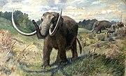 Knight Mastodon