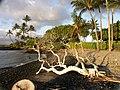 Kohala Coast 2006 - panoramio.jpg
