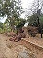 Kotli Noonan, Pakistan - panoramio (78).jpg
