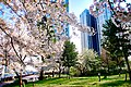 Kounan-ryokusui-park1.jpg