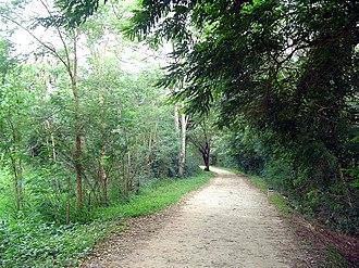 Kukkarahalli Lake - The jog path/walkway along the Kukkarahally Lake