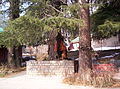 Kullu manali (109).JPG