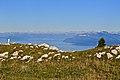La Dôle - panoramio (98).jpg