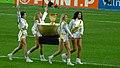 La coupe de la ligue 2, Coupe de la Ligue Final 2010.jpg