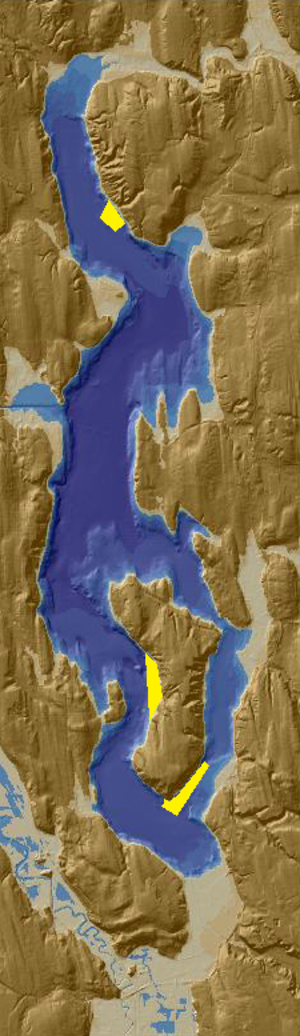 Lake Washington sunken forests - Sunken forests highlighted in yellow in Lake Washington off Kirkland (top) and Mercer Island (bottom)