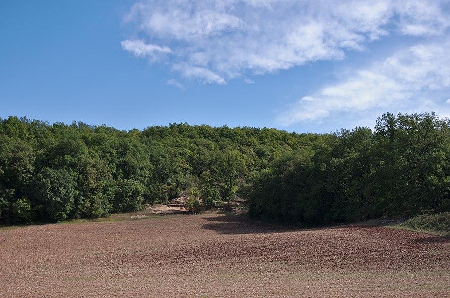 Lalbenque - 20140922 - Vers le Gascou