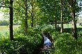 Landschaftsschutzgebiet Gütersloh - Isselhorst - Krullsbach (3).jpg