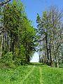 Landschaftsschutzgebiet Gestorfer Lößhügel (3).JPG