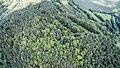 Landschaftsschutzgebiet Gleitsch FFH-Gebiet Saaletal zwischen Hohenwarte und Saalfeld Gleitsch Südseite I.jpg
