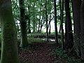 Landschaftsschutzgebiet Warmenau-Ufer LSG OS 00019 Datei 18.jpg