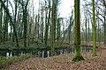 Landschap De Stroopers te Kemzeke - 372124 - onroerenderfgoed.jpg