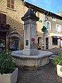 Le Bois-d'Oingt - Fontaine place Guillermin (nov 2018).jpg