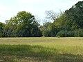 Liddell Archeological Site 003.JPG