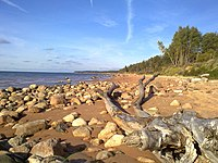 Liepupe parish, Latvia - panoramio.jpg