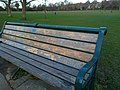Long shot of the bench (OpenBenches 3549-1).jpg