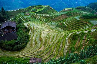 Longji Town in Guangxi, China