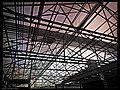 Lowes Greenhouse - Flickr - pinemikey.jpg