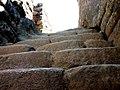 Machu Picchu (Peru) (14907086739).jpg