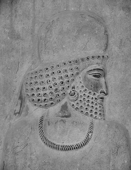 Median man in Persepolis relief - Iranian art