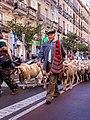 Madrid - XX fiesta de la trashumancia - 131006 105228.jpg