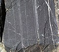 Magnetite banded iron formation (Soudan Iron-Formation, Neoarchean, ~2.69 Ga; Rt. 169 roadcut between Soudan & Robinson, Minnesota, USA) 7 (18853173950).jpg