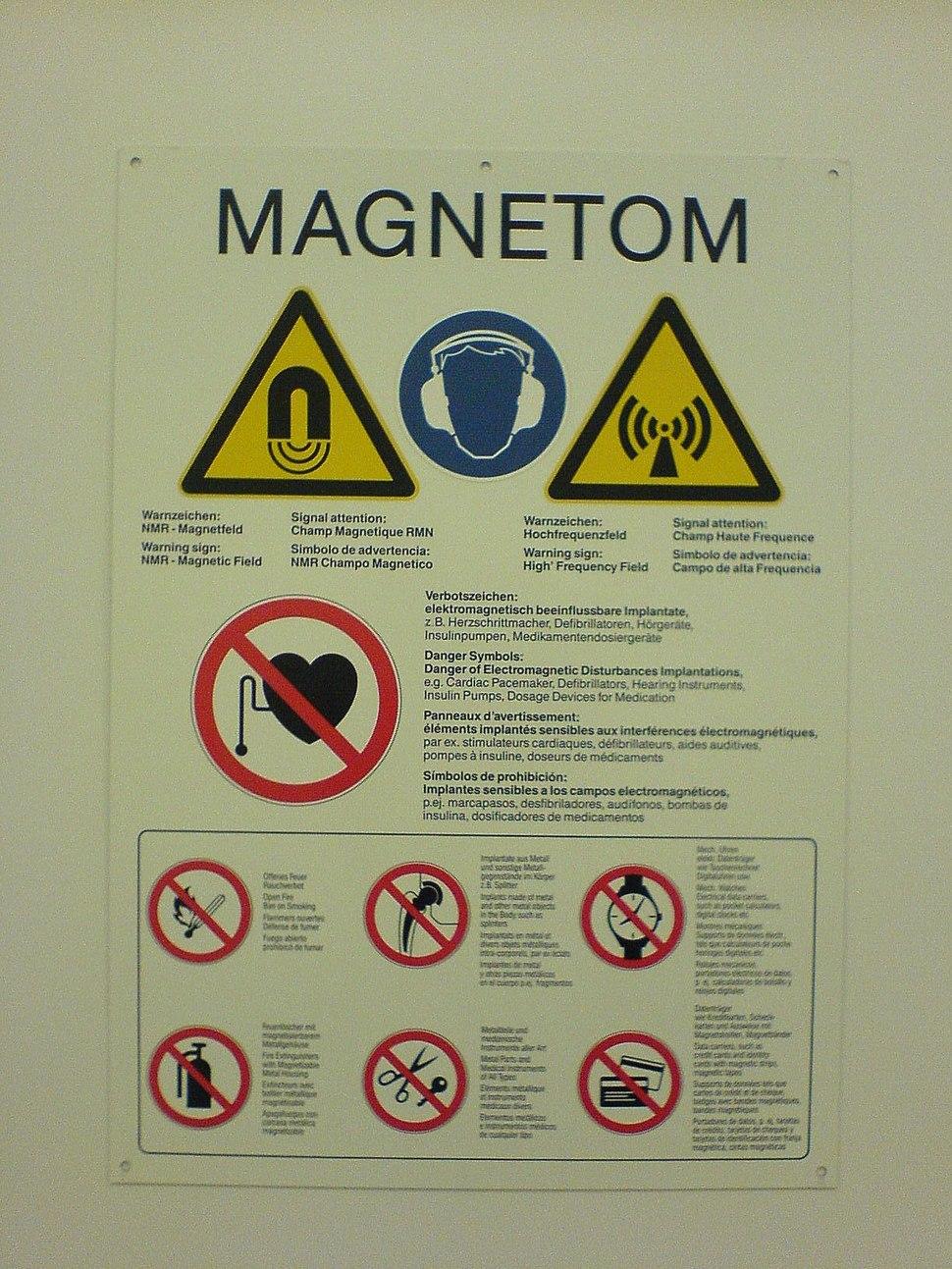 Magnetom signs