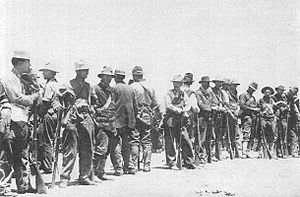 Border War (1910–19) - American Magonistas after the First Battle of Tijuana in 1911