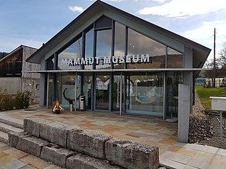 Mammutmuseum Niederweningen - Image: Mammut Museum Niederweningen 20170319 160437