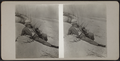 Man with a camera on the beach, from Robert N. Dennis collection of stereoscopic views.png