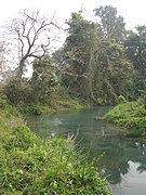 Manas Wildlife Sanctuary-118455.jpg