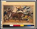 Manchester bull-hunt LCCN00652671.jpg