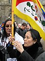 Manifestants Paris avril 2008.jpg