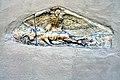 Maria Saal Possau Kirche Grabbaurelief mit Adlerdarstellung 06082009 64.jpg