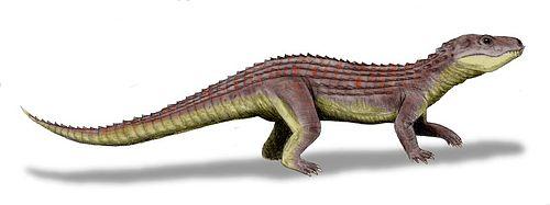 Mariliasuchus